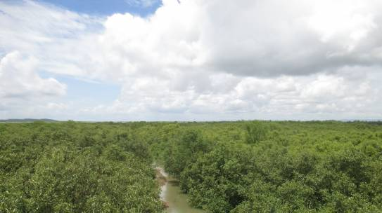 Natural Resource Management (NRM)